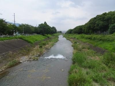 付近を流れる山科川