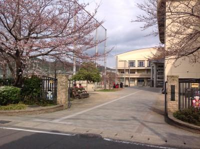 花山中学校まで約304m